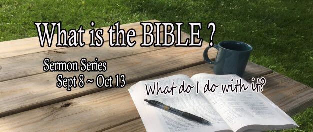 What is the Bible Sermon Series
